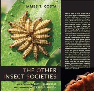 TheOtherInsectSocieties
